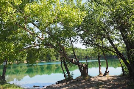 Malé Čunovské jazero a okolie Pontea