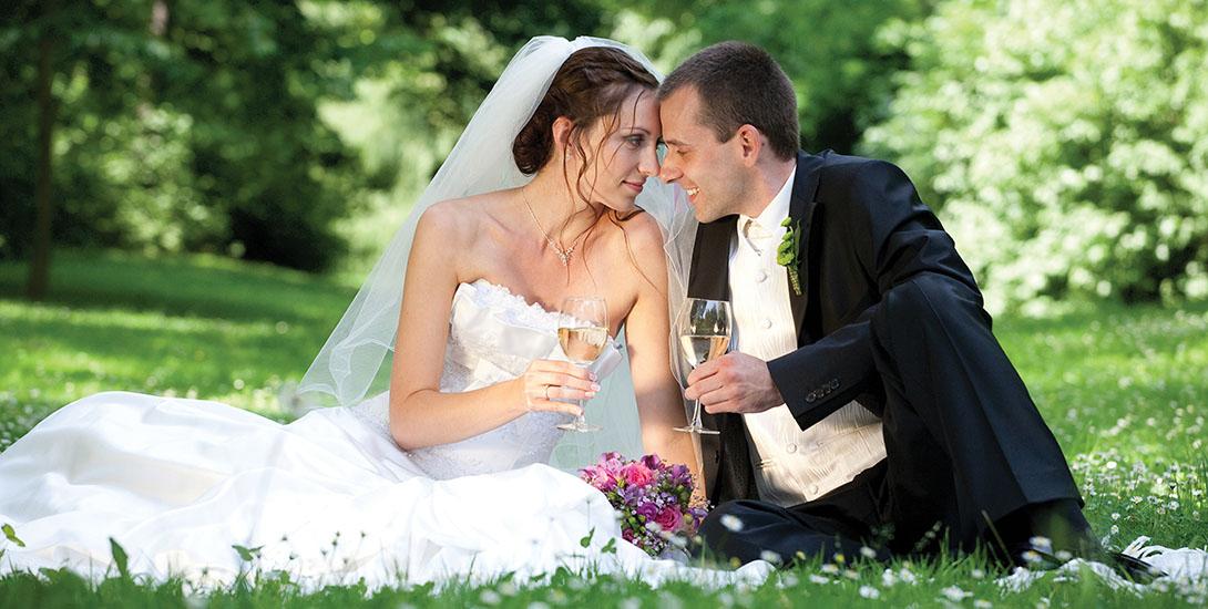 _ponteo-activity-park-svadba-v-style-ponteo-2