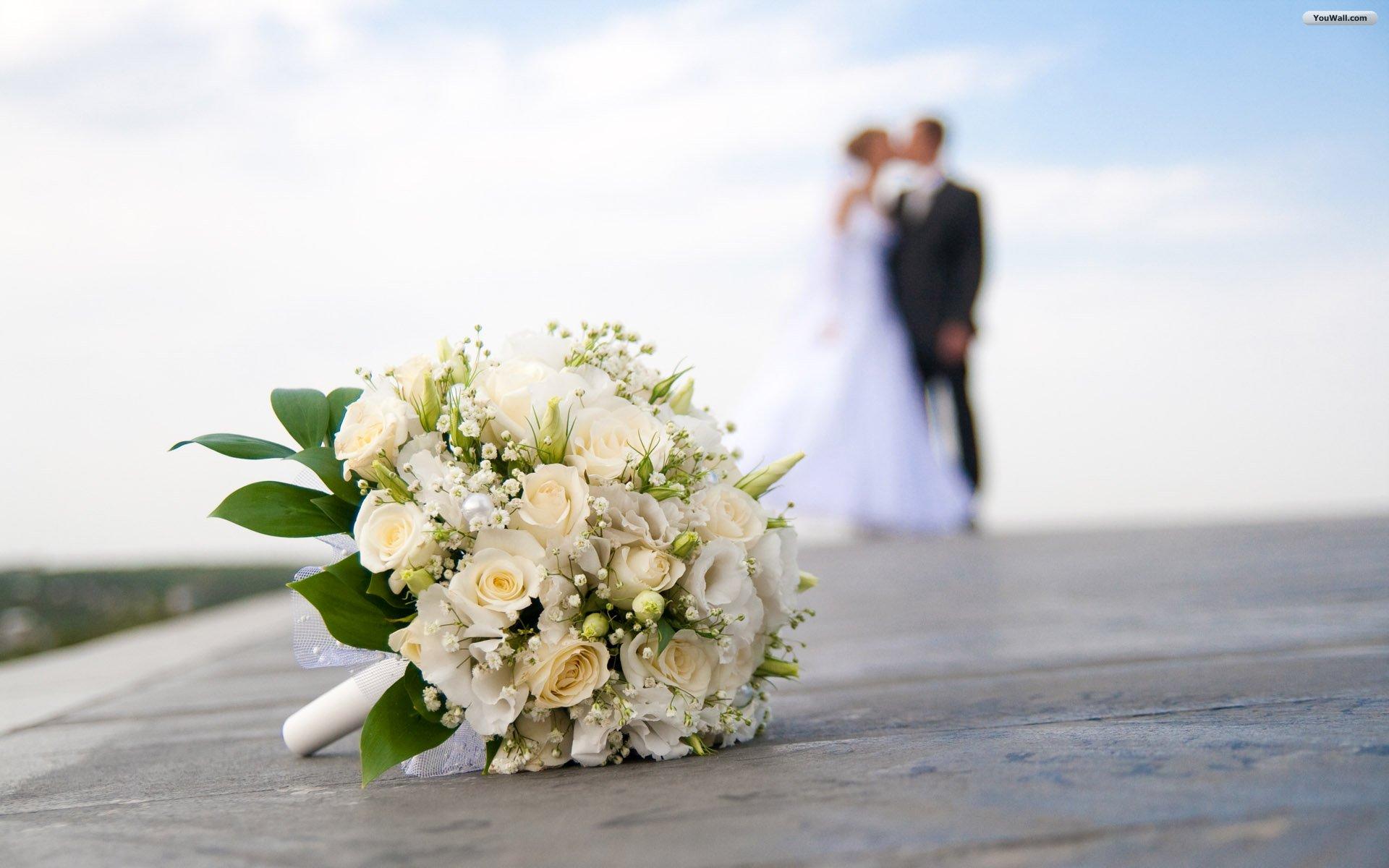 Wedding in the ponteo style ponteo activity park bratislava rusovce junglespirit Gallery